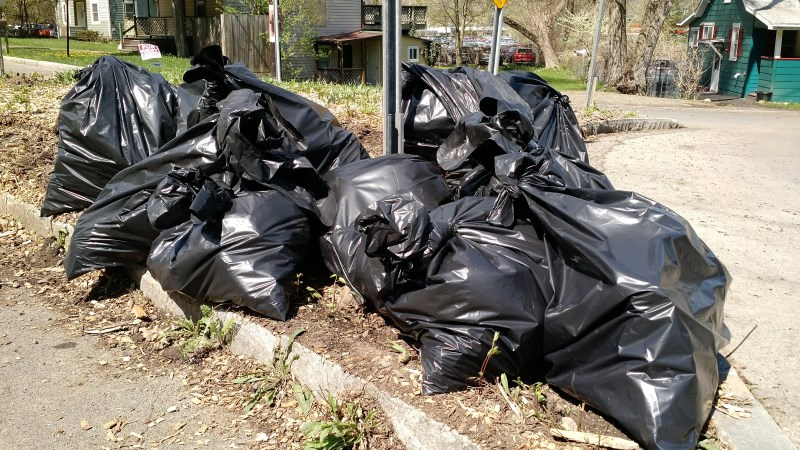Bags of Trash
